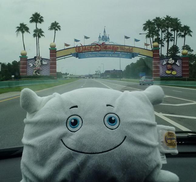 McStuffy O'Fluffigan is in Disney World!
