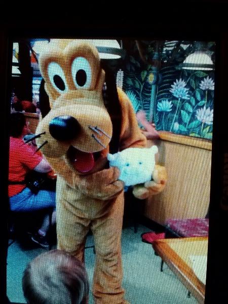 McStuffy got to meet Pluto too