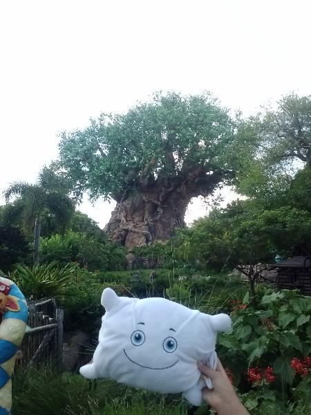 McStuffy O'Fluffigan at Disney's Animal Kingdom