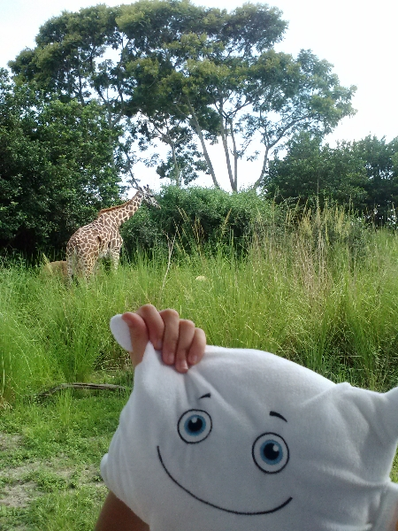 McStuffy and the giraffe on safari