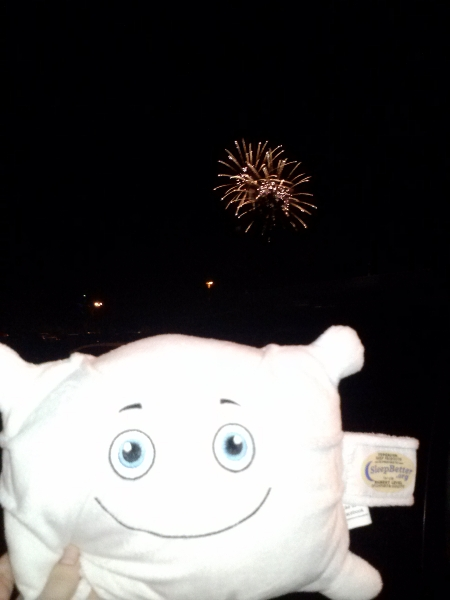McStuffy and Disney's nightly fireworks