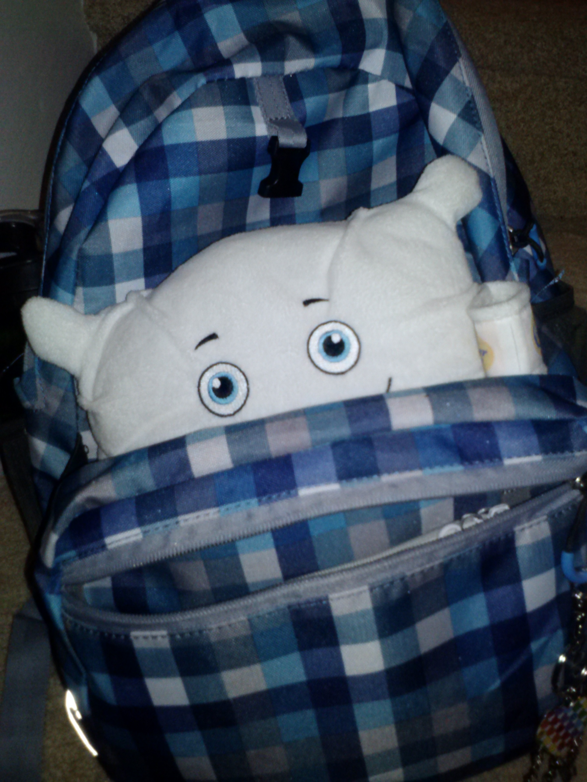 Do you think anyone would notice me tagging along to school in this backpack?