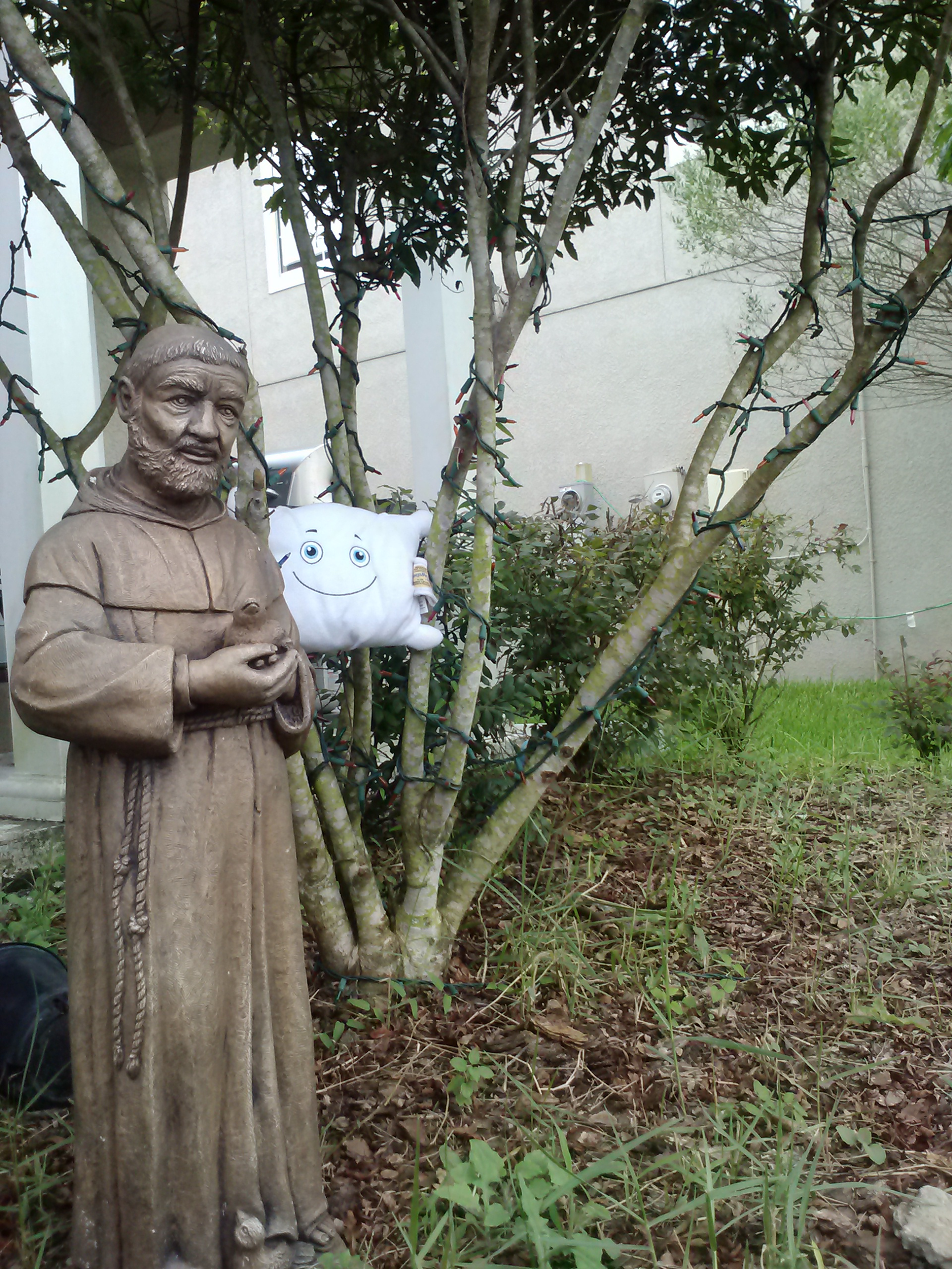 McStuffy with St. Francis