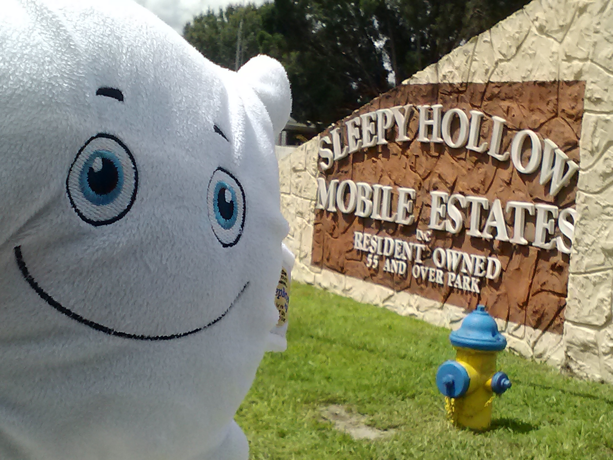 McStuffy O'Fluffigan went in search of sleep-related towns. He found this...