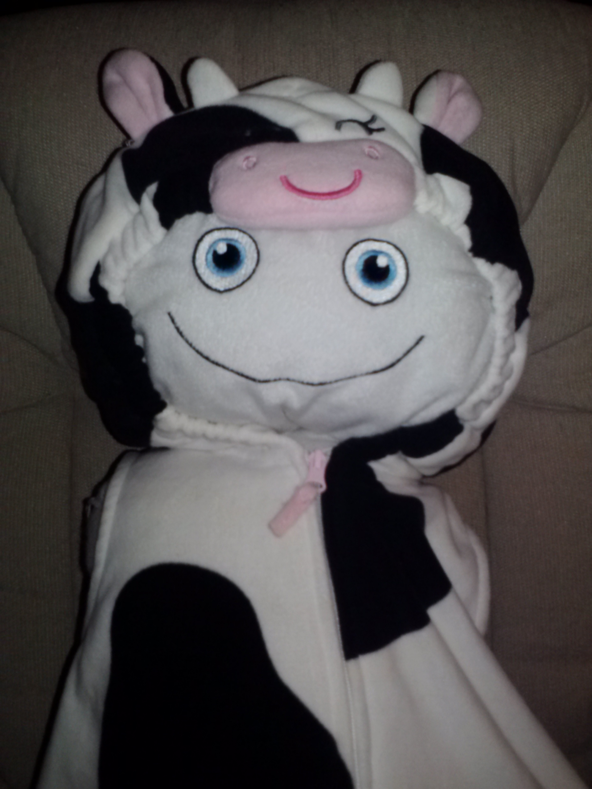 Dress-up time with McStuffy O'Fluffigan: McStuffy loves cows!