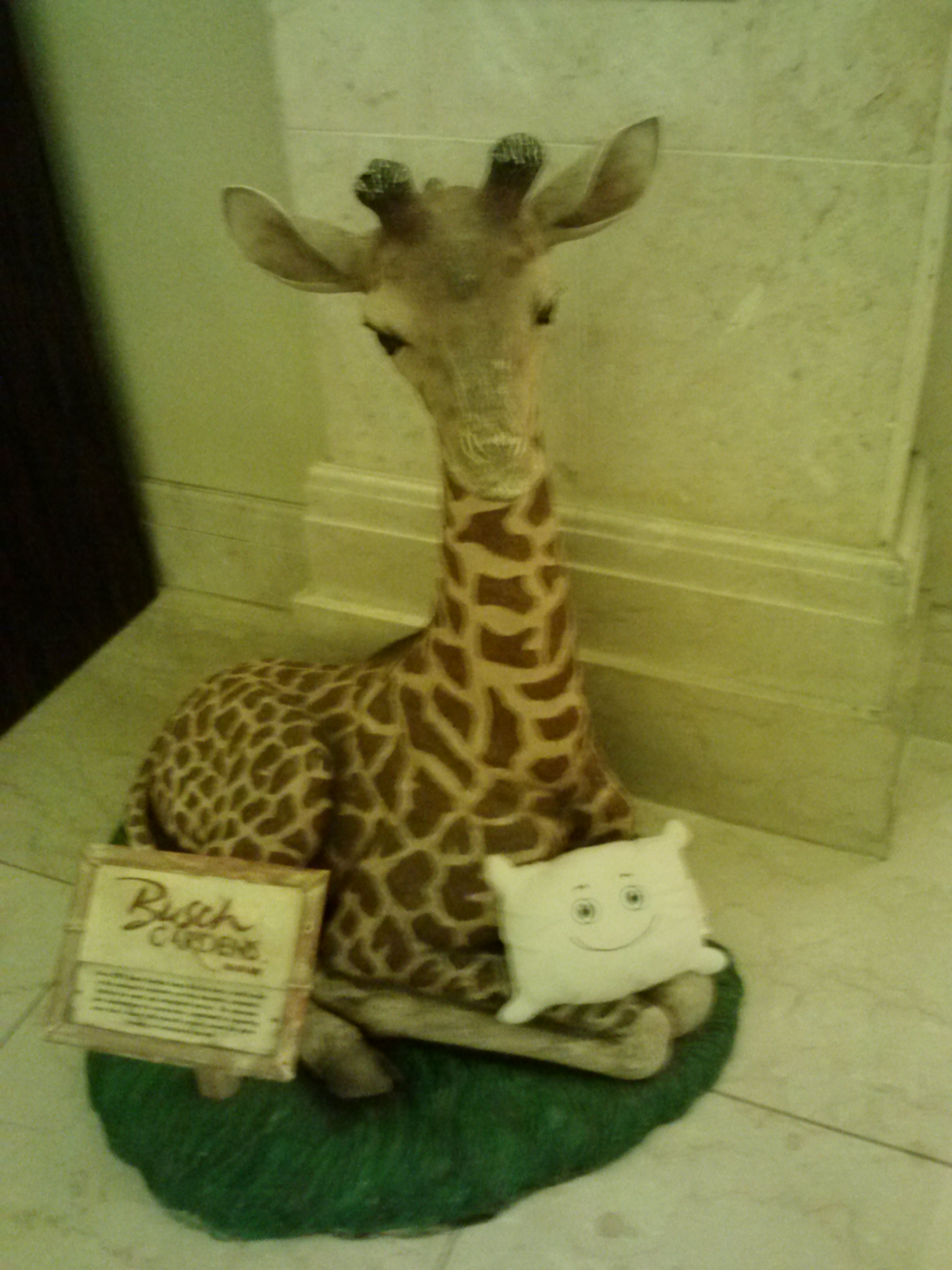 McStuffy wants to visit Busch Gardens. Maybe someday?