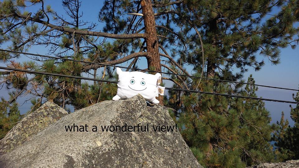 Enjoying the view at Tahoe