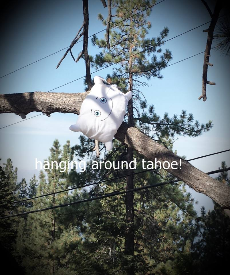 Just hanging around in Tahoe