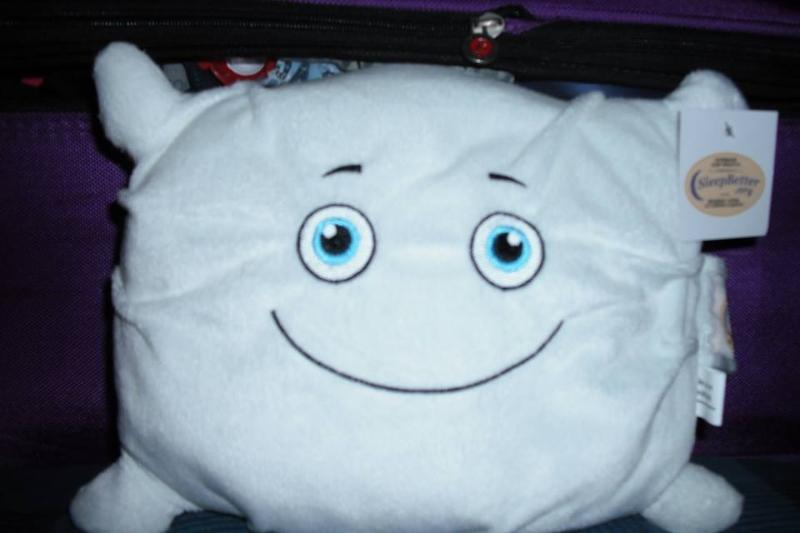 Pillow Arrives