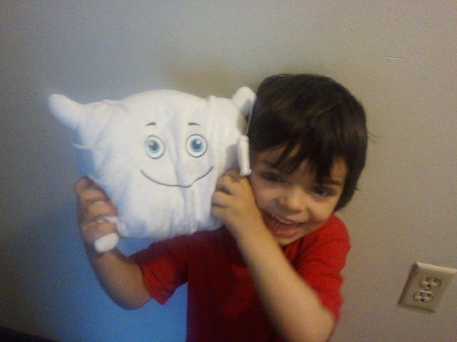 Pillow meets his new brother