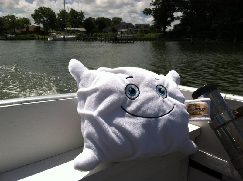Pillow goes boating in Deltaville