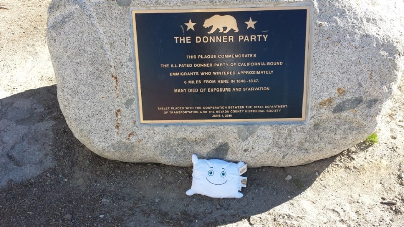Pillow learns California history