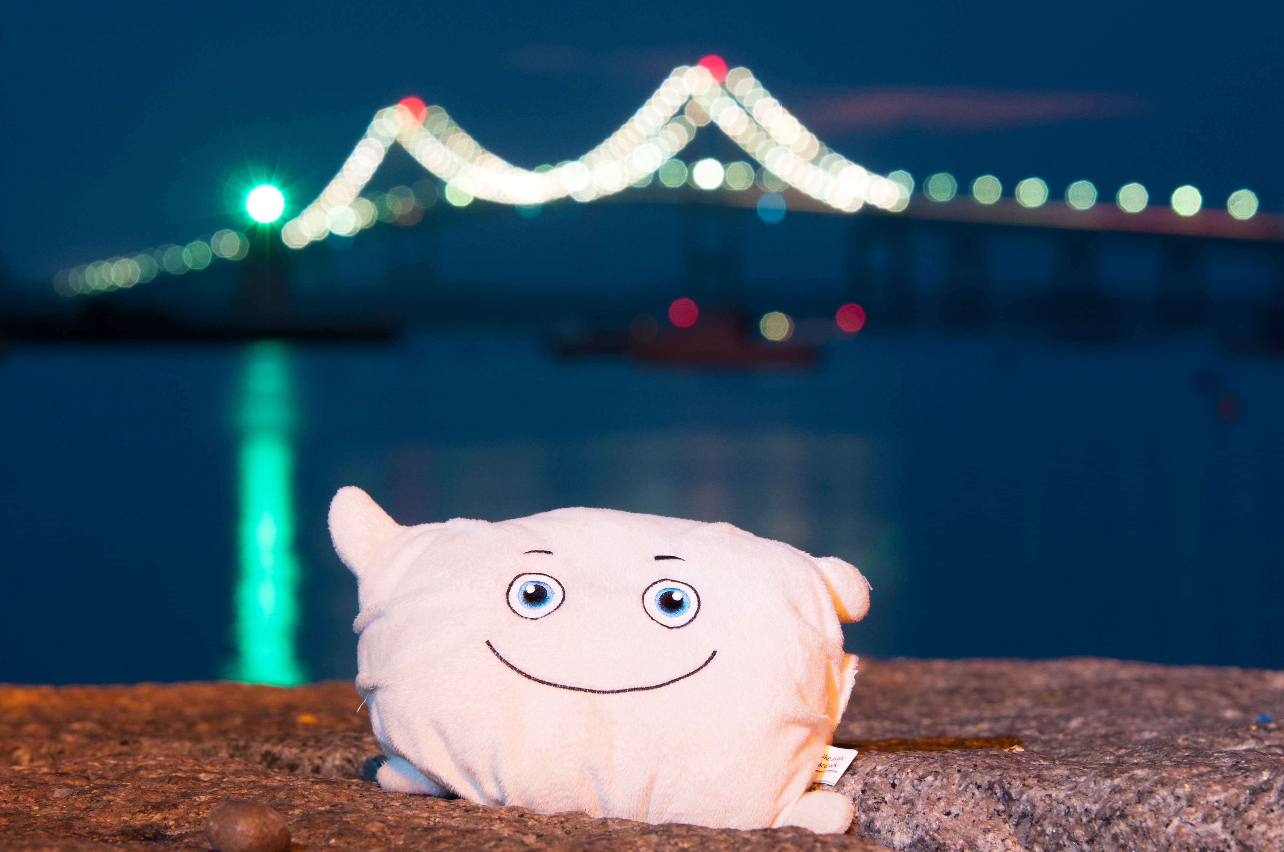 Pillow Featherbed in front of the Newport Bridge