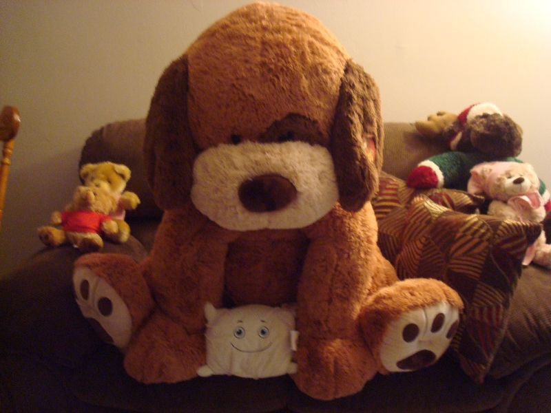 Pillow visits with his plush buddies