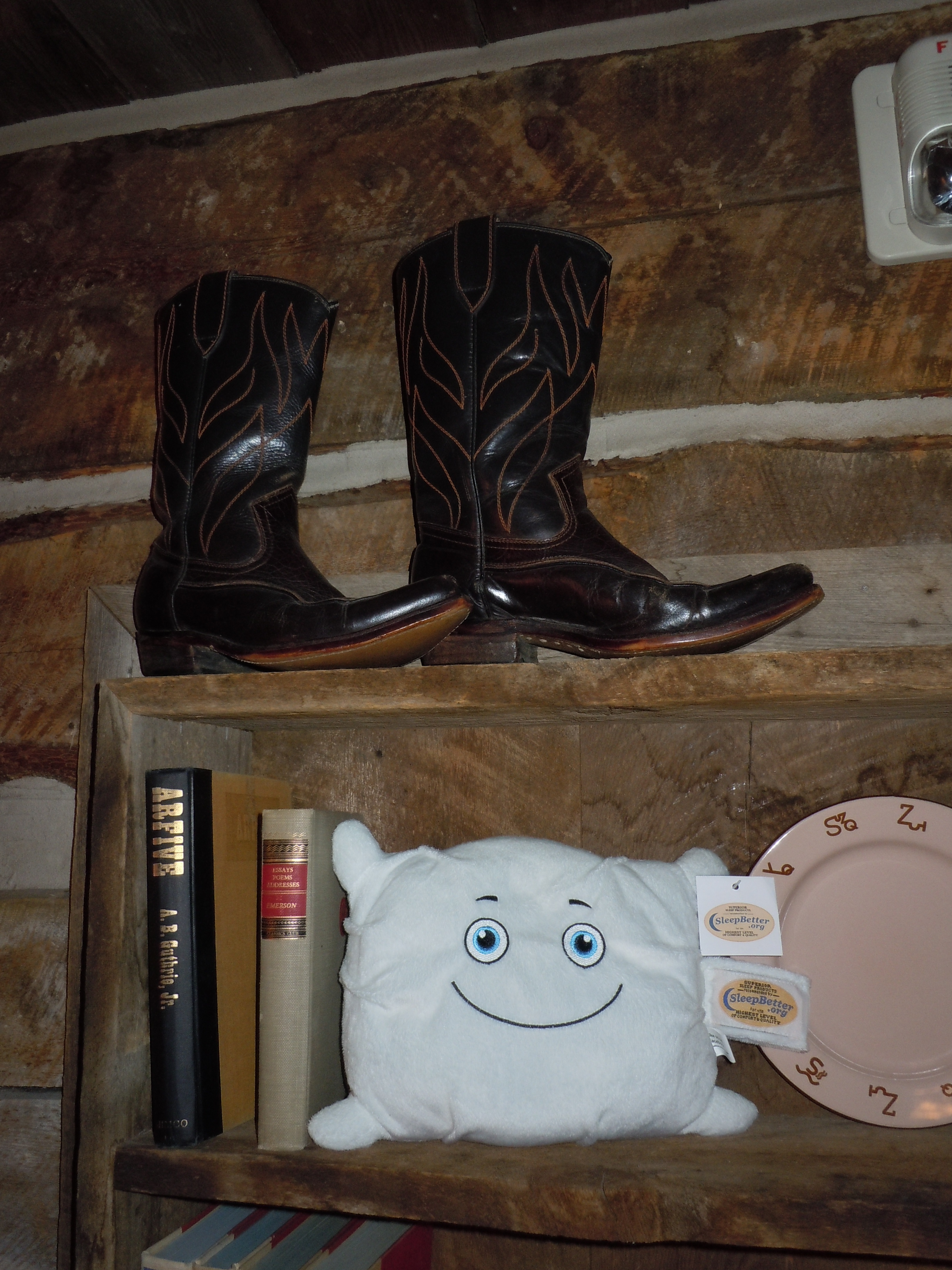 Fluffy is wishing he could wear boots