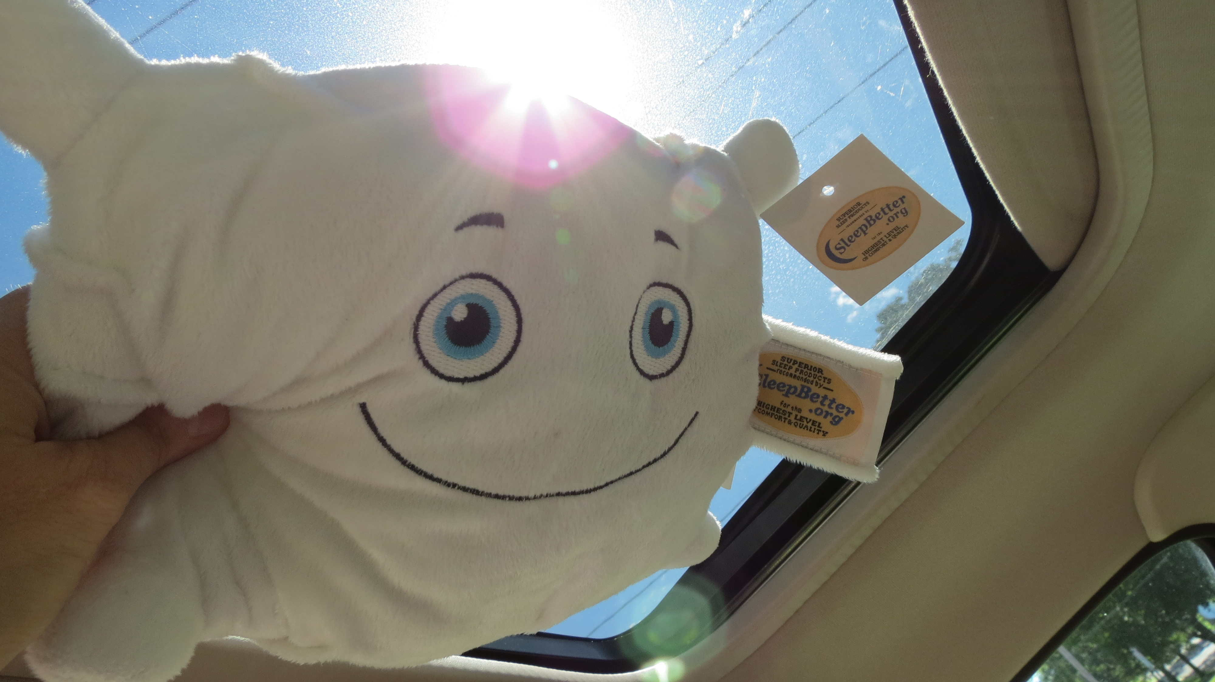 No convertable here, so Phil O. T. Pillow had to settle for a moonroof