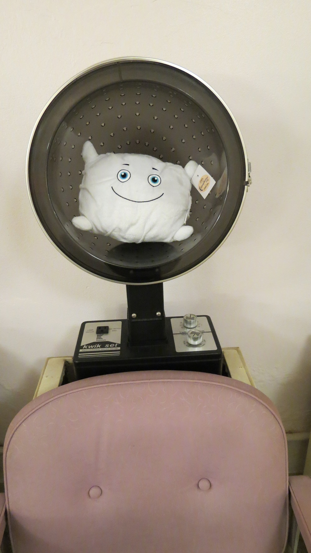 Grandma's hairdresser let Phil. O. sit under the dryer when she went to the beauty salon!
