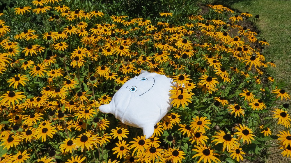 Phil O. found a wonderful place to take a nap after lunch. He loves flowers!