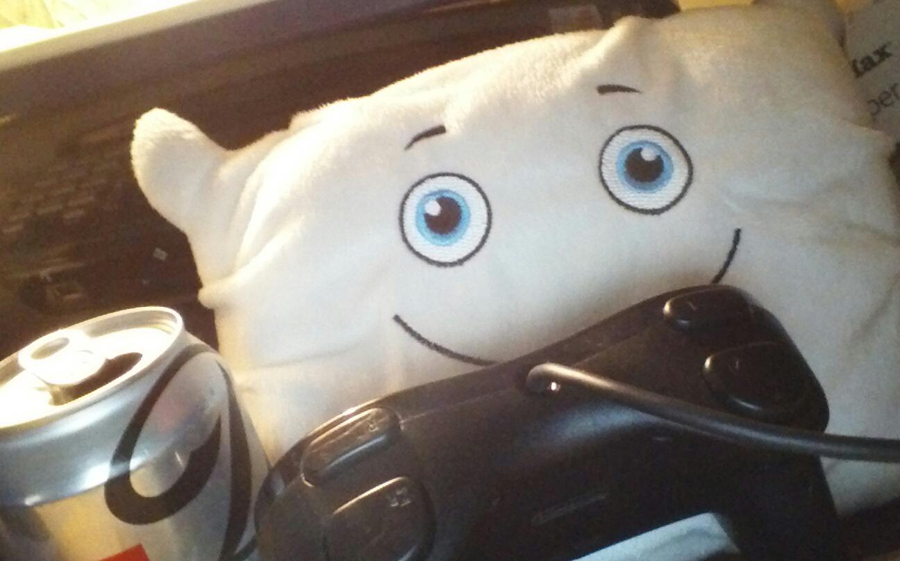 Gamer Pillow!
