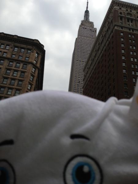 Pillow & the Empire State Building