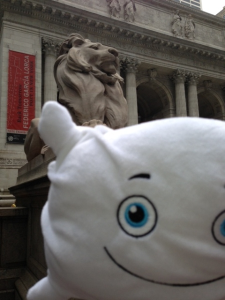 Pillow & the NYC Public Library