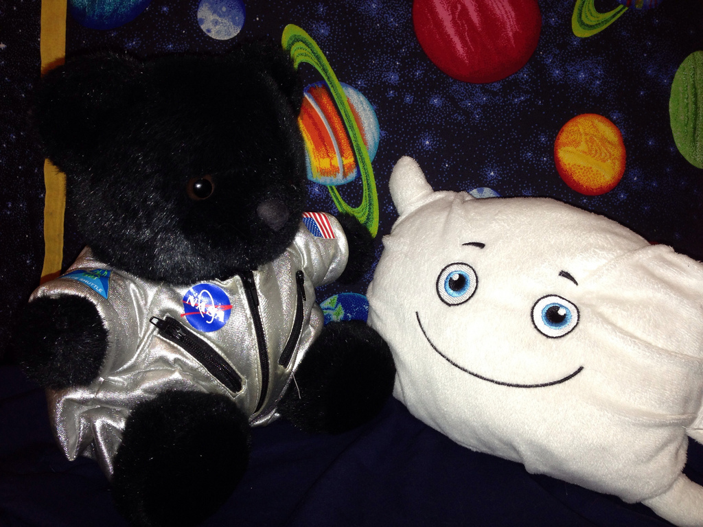 Getting some space advice from a space bear