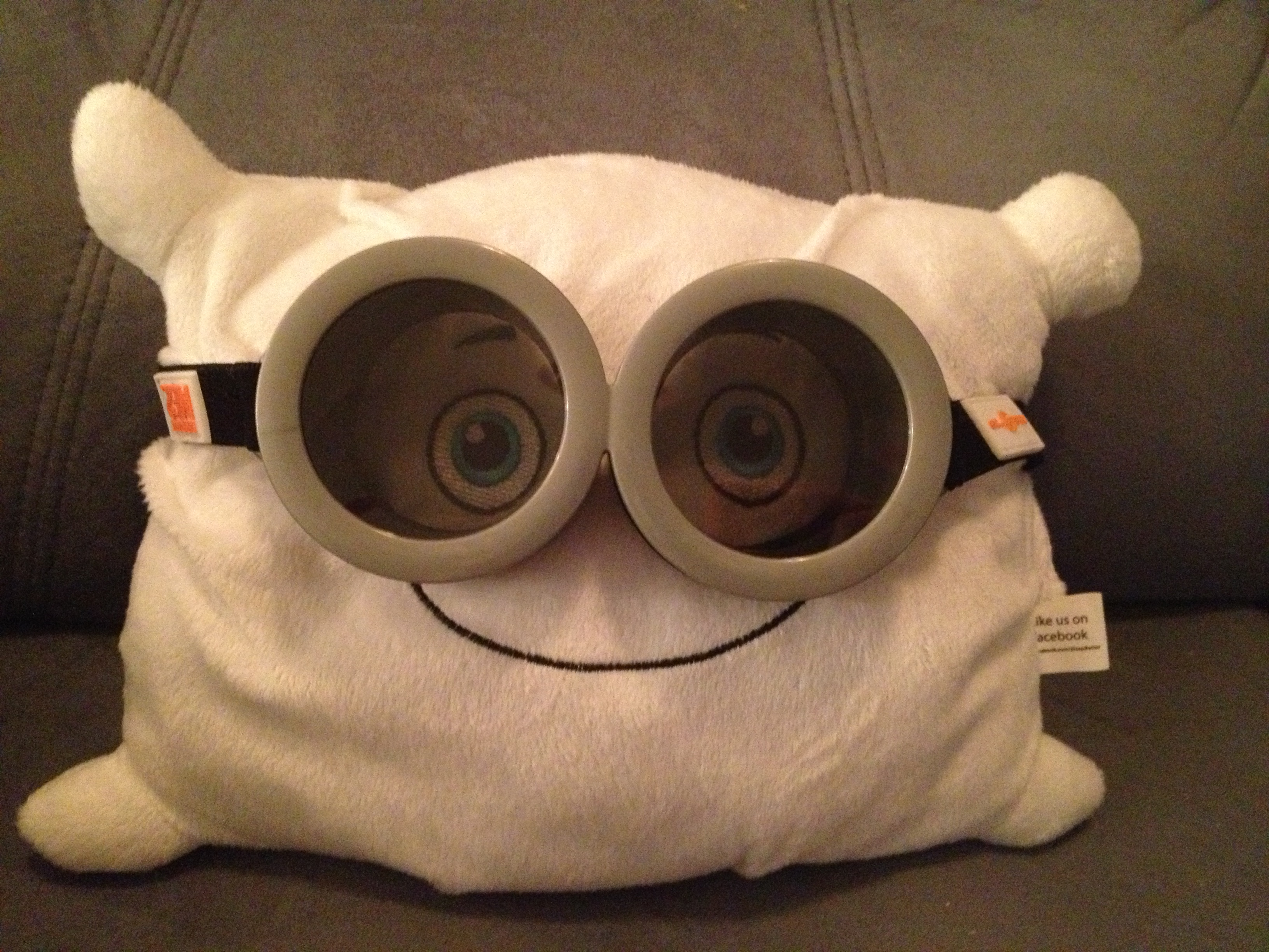 Found some flight goggles! All systems go for launch!