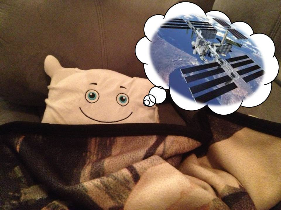 Neil Fluffstrong was so excited he tired himself out and fell asleep on the couch! Wonder what he is dreaming about?
