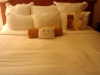 McStuffy is checking the hotel pillows to assess potential sleep quality!