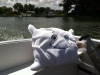 Pillow goes boating in Deltaville