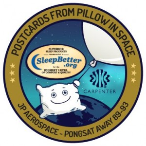 Pillow in Space Mission Patch