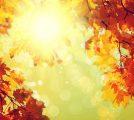bigstock-Autumn-Blurred-Fall-Abstract--71045257